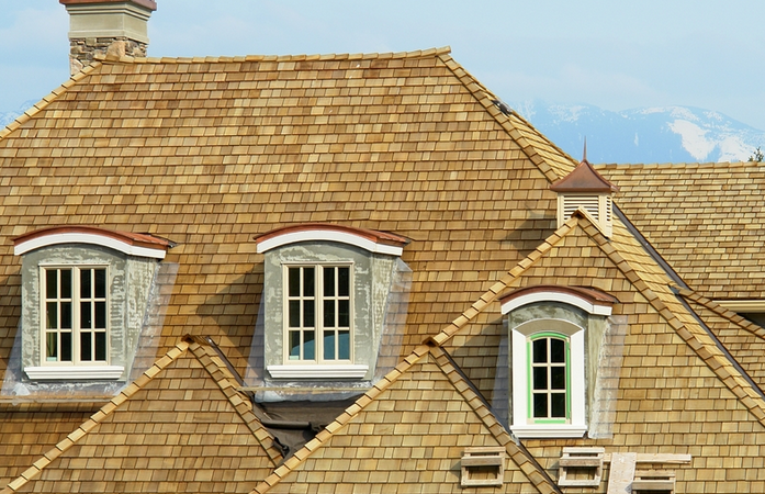 What Are the Most Expensive Roofing Materials?